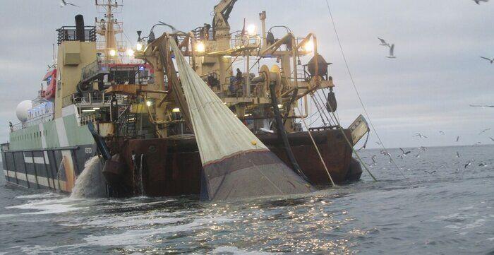 2 فروند کشتی صید ترال در جاسک توقیف شد